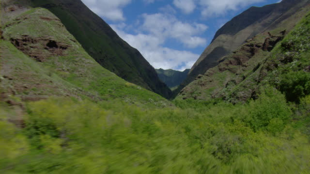 aerial view of lush valley between west maui mountains in hawaii. - 谷点の映像素材/bロール