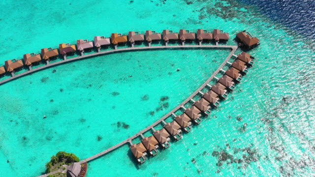 vídeos de stock e filmes b-roll de aerial view of luxury resort in maldives - árvore tropical