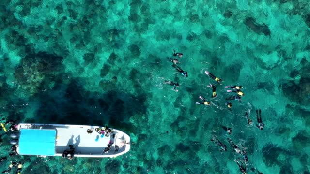luftaufnahme von vielen menschen, die unter der meeresoberfläche tauchen - sprung wassersport stock-videos und b-roll-filmmaterial