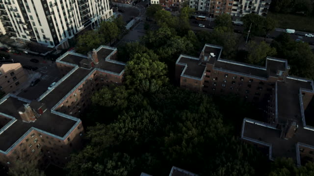 aerial view of marcy housing projects brooklyn - council flat stock videos & royalty-free footage