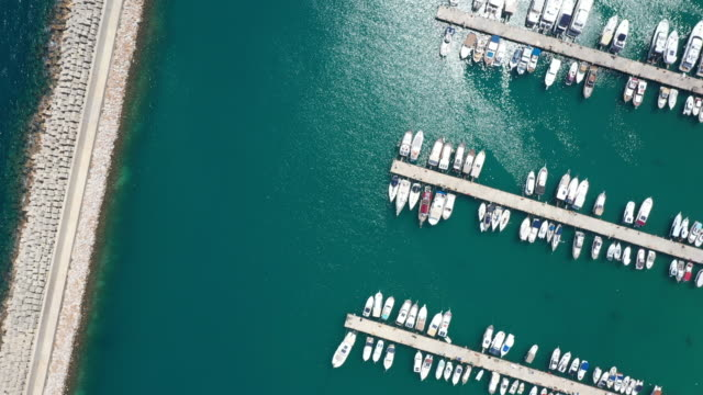 aerial view of marina bay with sailboats and yachts - luogo d'interesse locale video stock e b–roll