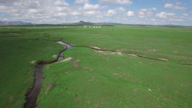 aerial view of meadow with horses near ulan bator - independent mongolia stock videos & royalty-free footage