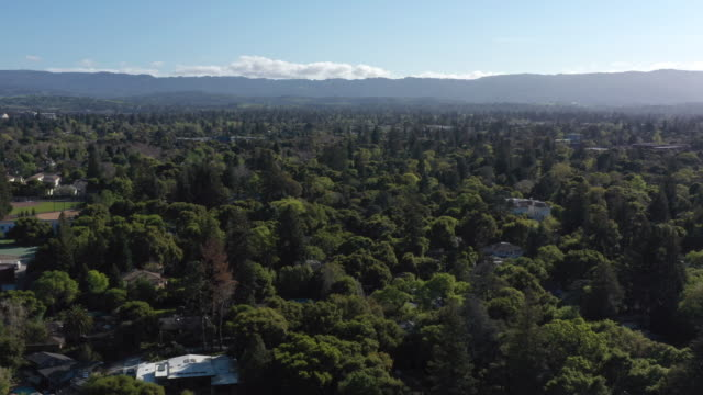 aerial view of menlo park palo alto neighborhood near facebook office - baia di san francisco video stock e b–roll