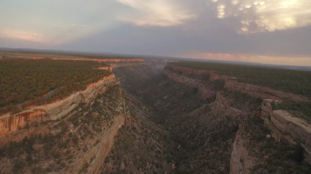 aerial view of mesa verde national park - mesa verde nationalpark stock-videos und b-roll-filmmaterial