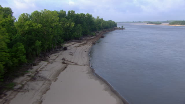 aerial view of mississippi river shoreline with trees, mississippi, united states of america - ミシシッピ川点の映像素材/bロール