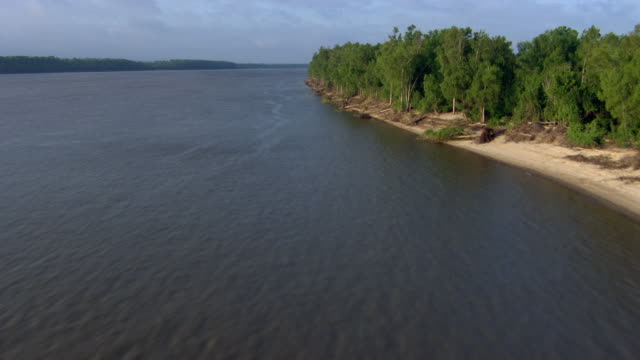aerial view of mississippi river with tree covered landscape, mississippi, united states of america - river mississippi stock videos & royalty-free footage