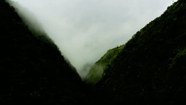 aerial view of misty valley rainforests rock cliffs - pacific islands stock videos & royalty-free footage