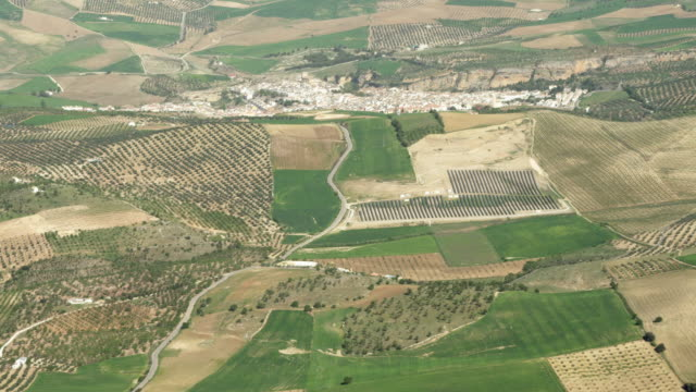 aerial view of mixed agricultural landscape (fields and olive plantations) with village in background - 2k resolution stock videos and b-roll footage