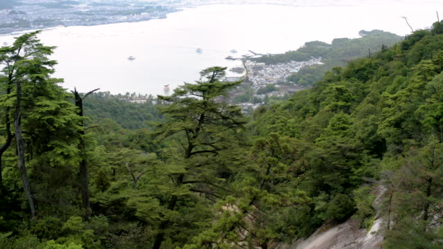 aerial view of miyajima island and forest - shinto shrine stock videos & royalty-free footage