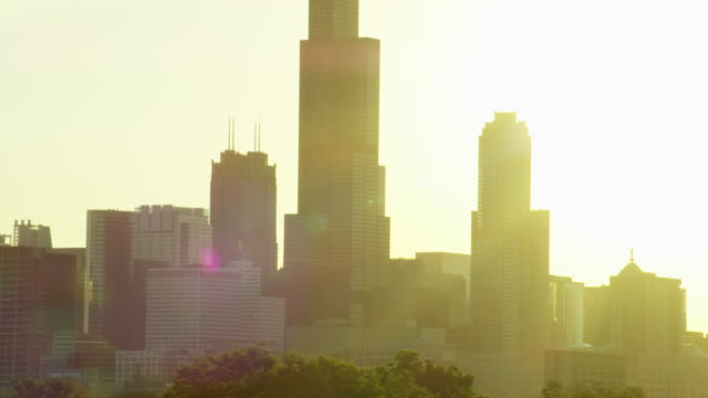 aerial view of modern skyscrapers downtown chicago us - willis tower stock videos and b-roll footage