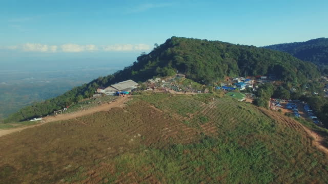 monjam チェンマイの空撮 - 木を抱く点の映像素材/bロール