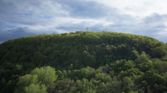 aerial view of mount royal park - montréal stock-videos und b-roll-filmmaterial