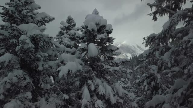 luftbild von berg landschaft - georgia stock-videos und b-roll-filmmaterial