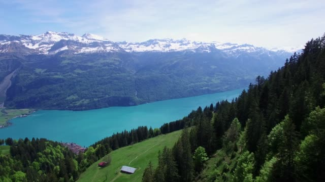 aerial view of mountain landscape with lake and trees - panoramic stock videos and b-roll footage