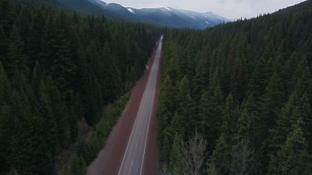 aerial view of mountain, mt hood and forest - mt hood stock videos & royalty-free footage