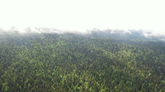 aerial view of mountains in fog - named wilderness area stock videos & royalty-free footage