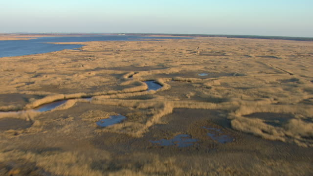 vidéos et rushes de aerial view of mullica river in new jersey, united states of america. - marécage