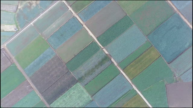 Aerial view of multi-colored fields in Jeju-do Island