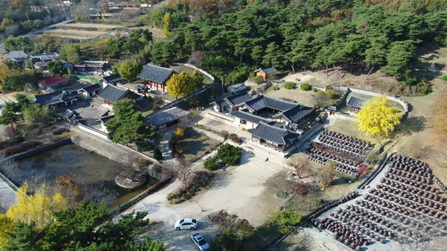 Aerial View Of Myeongjae Residence In Autumn Stock Footage