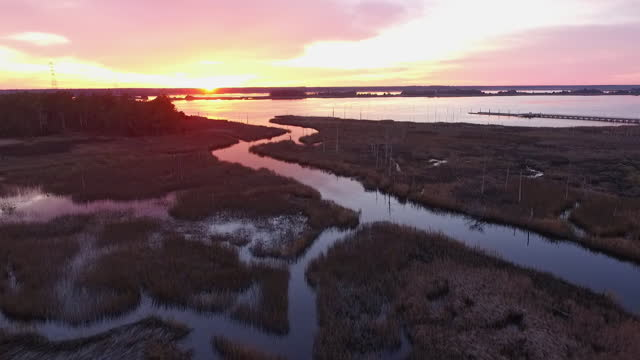 vídeos y material grabado en eventos de stock de drone. aerial view of natural marshlands during majestic sunset near the cape fear river - wilmington carolina del norte