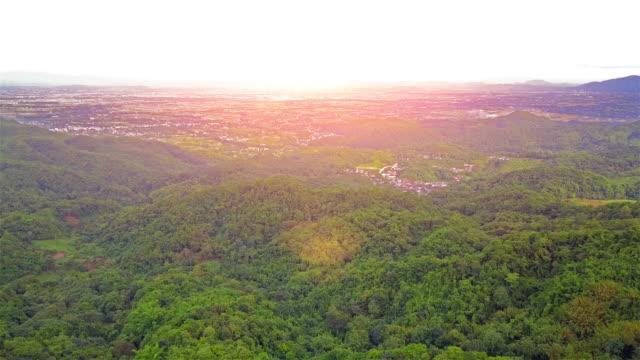 自然の森と夏の山の空撮 - 木を抱く点の映像素材/bロール