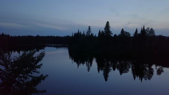 自然の森と日没時夏川の航空写真 - 木を抱く点の映像素材/bロール