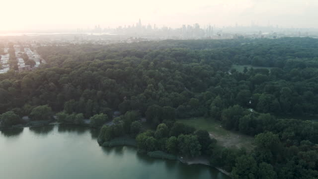 aerial view of new york city and prospect park - vanishing point stock videos & royalty-free footage