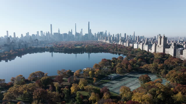 aerial view of new york city's central park on a crisp fall morning - manhattan stock videos & royalty-free footage