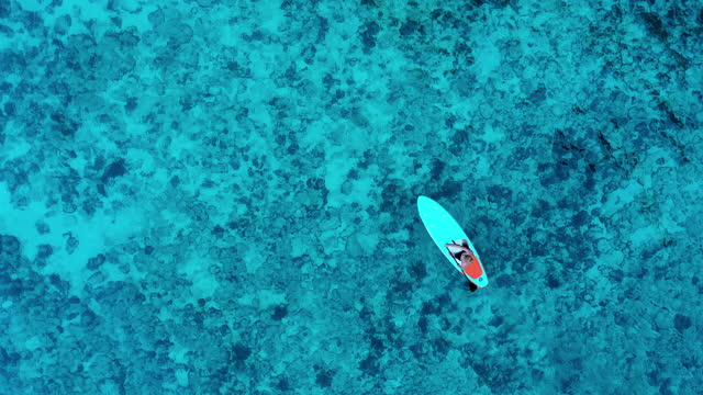 aerial view of nice day,young men kayaking on sea on a tropical climate.tropical vacation activities concept. - luxury stock videos & royalty-free footage