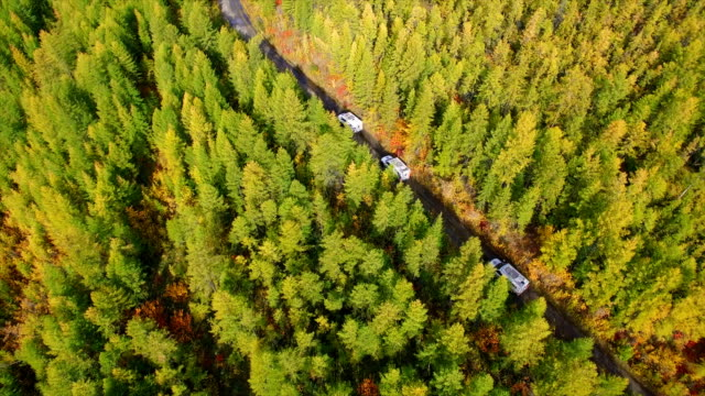 stockvideo's en b-roll-footage met aerial view of off-road vehicle runs in the far east wasteland,russia - twijg