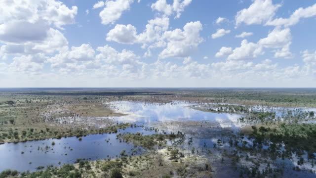 vídeos de stock e filmes b-roll de aerial view of okavango swamp - planície