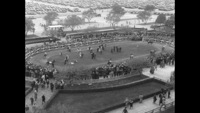 / aerial view of opening day at santa anita horse racing park / women spectators watch the horse race / winner of race top row and jockey silvio... - 1935 stock-videos und b-roll-filmmaterial