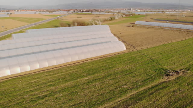 aerial view of organic farming and greenhouse - greenhouse stock videos & royalty-free footage