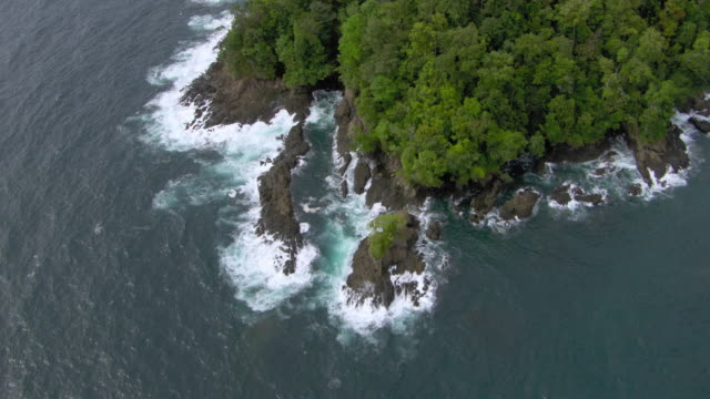 aerial view of pacific ocean with lush landscape, colombia - pacific ocean stock videos & royalty-free footage