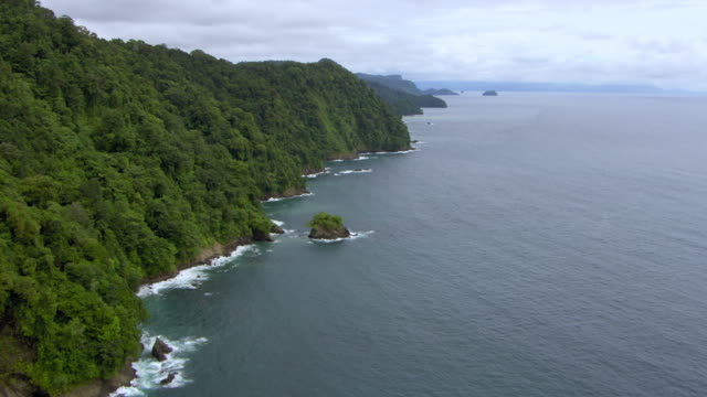 aerial view of pacific ocean with tree covered mountains, colombia - 生い茂る点の映像素材/bロール