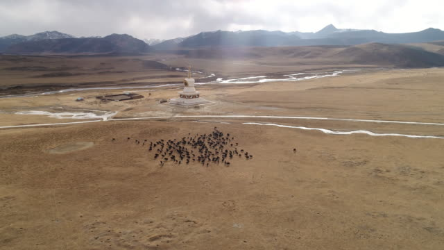 aerial view of pagoda in tibet - traditionally tibetan stock videos & royalty-free footage