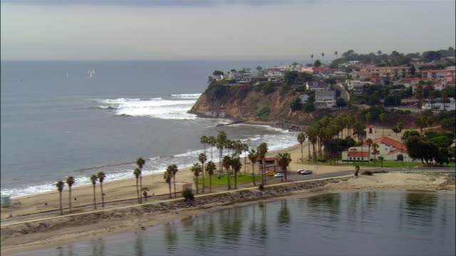 Aerial view of palm trees on beach and houses on cliff overlooking coastline / Long Beach, California