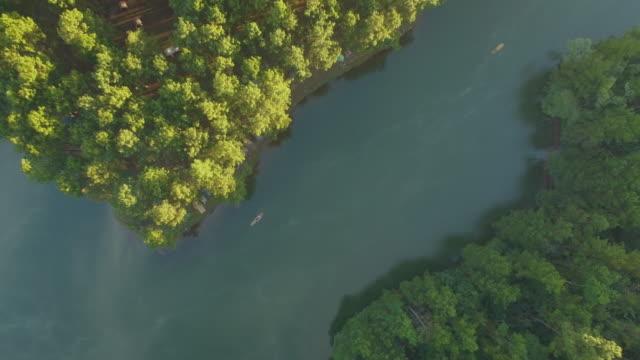 vídeos de stock e filmes b-roll de aerial view of  pang oung, pine forest in mae hong son - pine