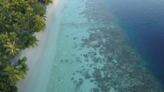 aerial view of paradisiac island in maldives - man made object stock videos & royalty-free footage
