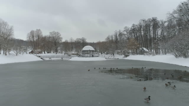 Aerial view of Park Feofania after a heavy snowfall