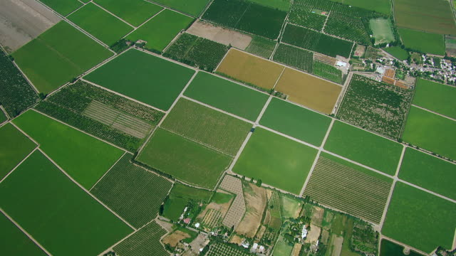 aerial view of patchwork farmland - terreno video stock e b–roll
