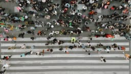 Aerial view of pedestrians walking across with crowded traffic.