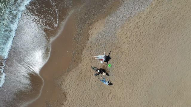 vídeos de stock e filmes b-roll de aerial view of people camping on the beach - baía