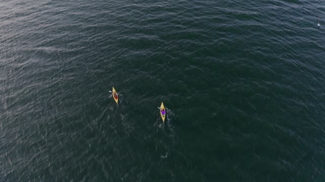 aerial view of people kayaking in the sea - kayaking stock videos & royalty-free footage