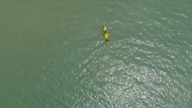 aerial view of people paddle kayak in the sea. - flat lay stock videos & royalty-free footage