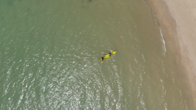 aerial view of people paddle kayak into the beach. - flat lay stock videos & royalty-free footage