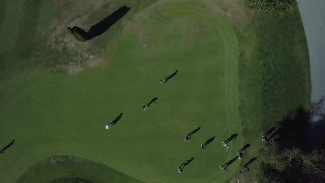 aerial view of people playing in competition of golf - golf stock videos & royalty-free footage