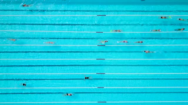 aerial view of people swimming in a pool - pool stock videos & royalty-free footage