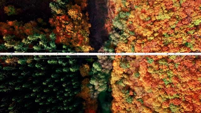 가을 정취 가득한 단풍길