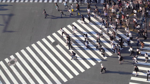 slo mo aerial view of people with long shadow at shibuya crossing in tokyo, japan - road junction stock videos & royalty-free footage